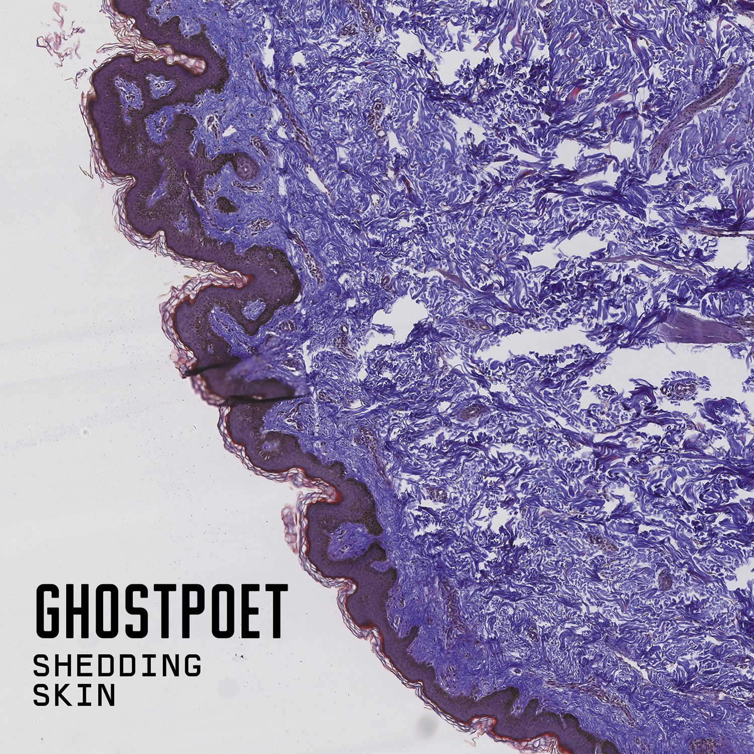 Ghostpoet ‎– Shedding Skin